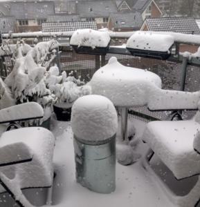 Sneeuw in Zwolle Zuid